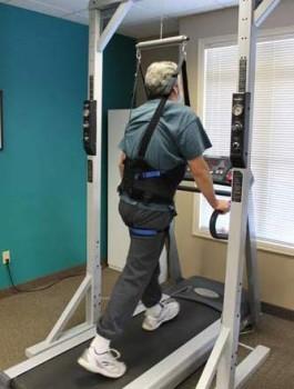 harnessed-walking